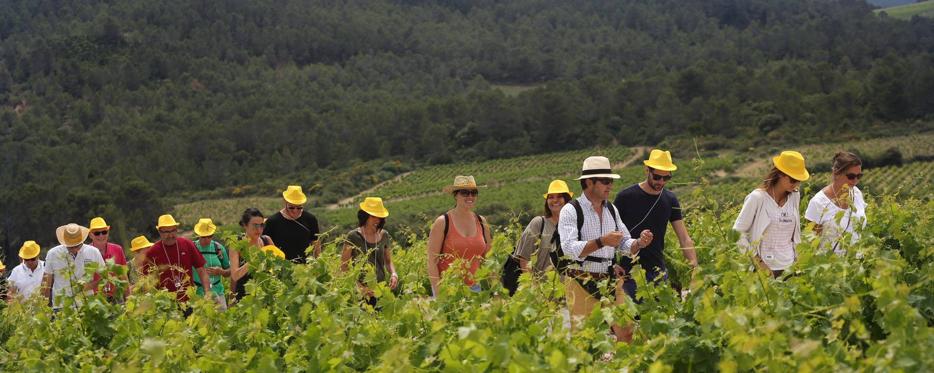 Balade gourmande Pays d'Art et d'Histoire Haut Languedoc et Vignobles