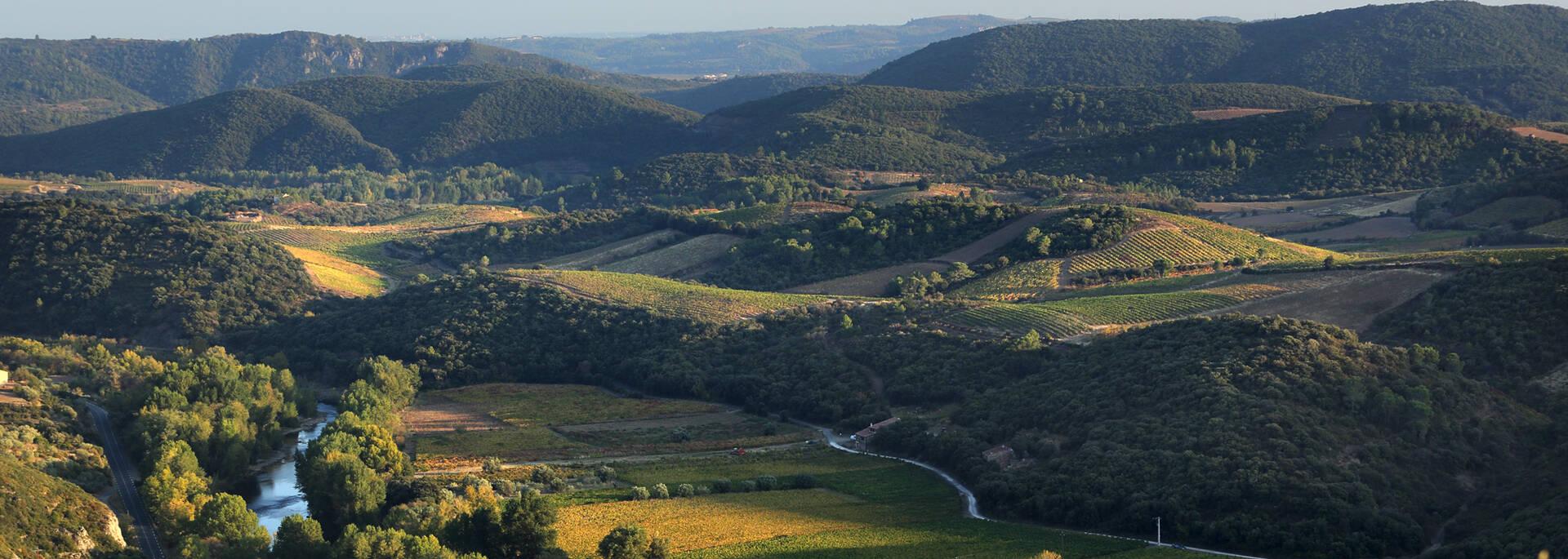 Vignobles et vallée de l'Orb ©G.Souche