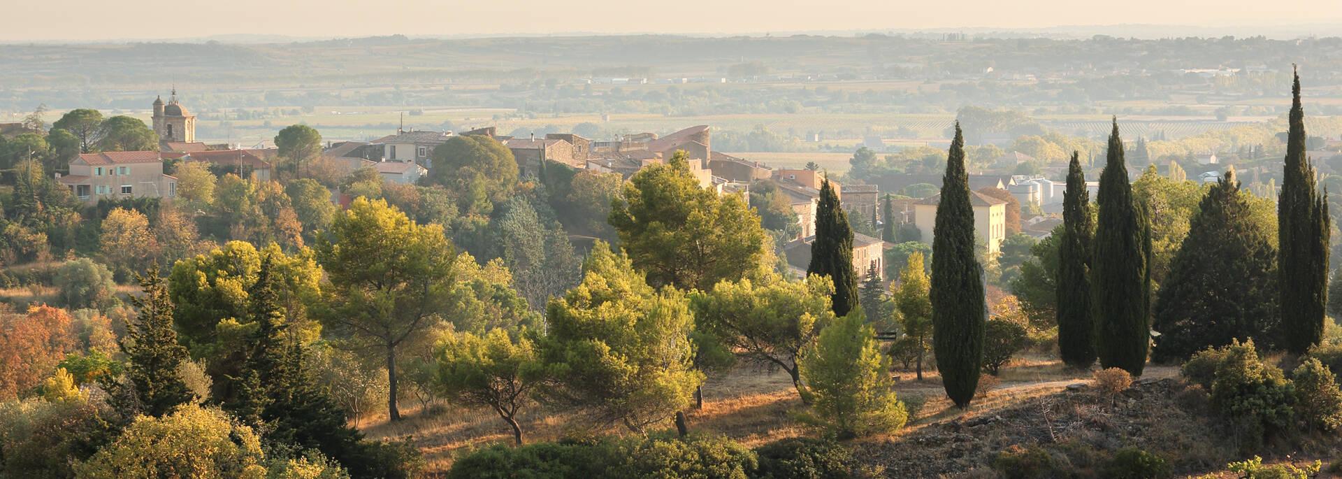 Paysage de piémont Pays d'Art et d'Histoire Haut Languedoc et Vignobles