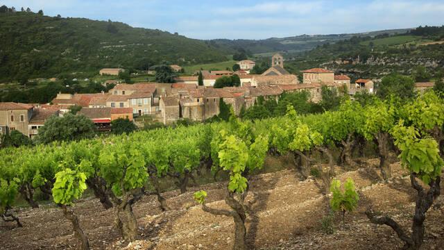 Vignobles et villages de Minerve
