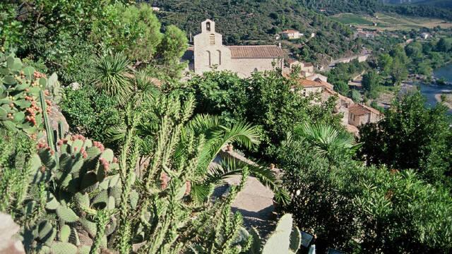 Le Jardin Méditerranéen de Roquebrun ©Alliance Consultants
