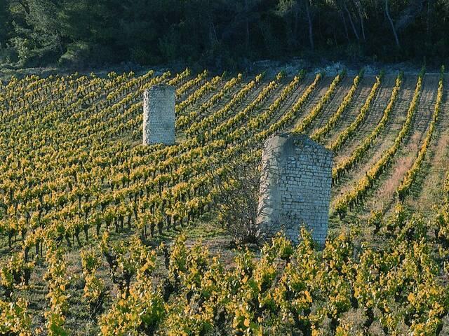 Vestiges d'aqueduc à Causses et Veyran © L. Micola - Pays Haut Languedoc et Vignobles