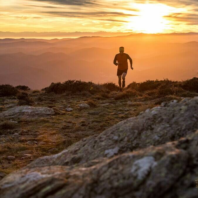 Trail Montagne du Caroux©A.Allies-PHLV