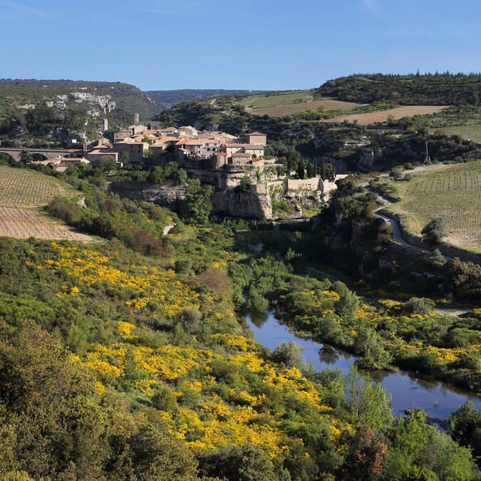 Rivière Pays d'Art et d'Histoire Haut Languedoc et Vignobles