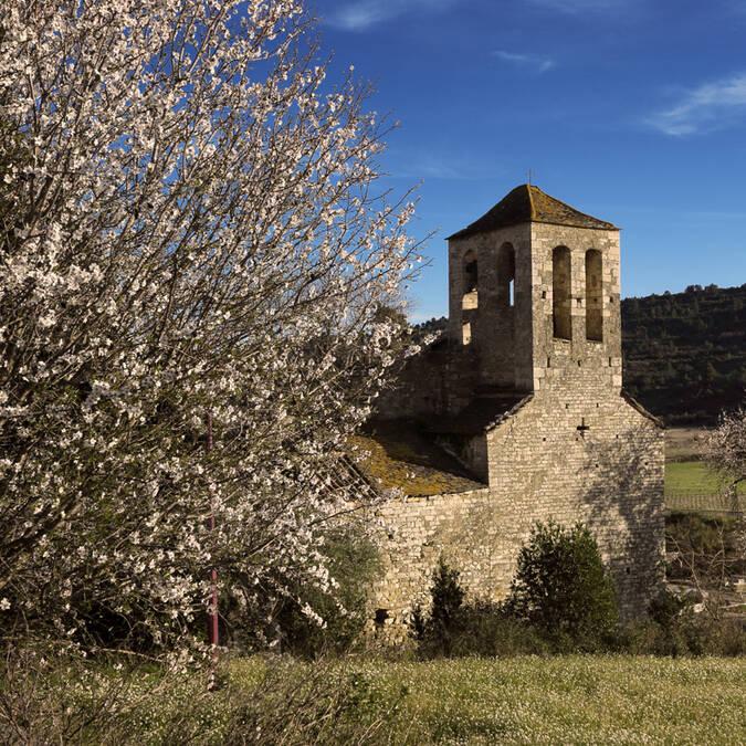 Eglise romane Pays d'Art et d'Histoire Haut Languedoc et Vignobles
